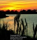 Boca Sunset-203259