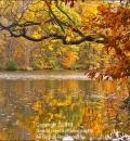 Lake Arthur 2-203993