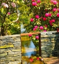 Heritage Gardens-204289