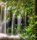 Elakala Falls-202558