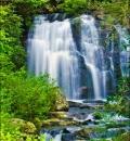 Meigs Falls, GSMNP-202008