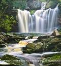 Elakala Falls-1-202753